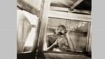 ഗാന്ധിയുടെ അപൂർവ്വ ചിത്രങ്ങൾ പകർത്തിയ ഫോട്ടോഗ്രാഫറും ക്യാമറയും