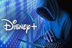 Disney+: ലോഞ്ച് ചെയ്ത് ദിവസങ്ങൾക്കകം ഡിസ്നി + അക്കൌണ്ടുകൾ ഹാക്ക് ചെയ്ത് ഓൺലൈനിൽ വിറ്റു