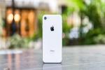 iPhone 9: ആപ്പിൾ ഐഫോൺ 9 മാർച്ചിൽ പുറത്തിറക്കിയേക്കും