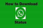 How To Download Whatsapp Status: വാട്സ്ആപ്പ് സ്റ്റാറ്റസുകൾ സ്മാർട്ട്ഫോണിലേക്ക് സേവ് ചെയ്യുന്നതെങ്ങനെ