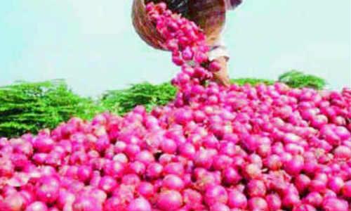ഒമ്പത് രൂപയ്ക്ക  ഉള്ളിയുമായി ഗ്രുപ്ഓണ് ഇന്ത്യ ഷോപ്പിംഗ് സൈറ്റ്