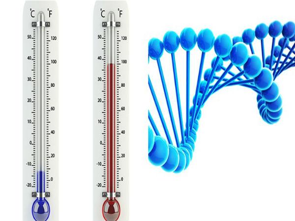 DNA ഉപയോഗിച്ച് ലോകത്തിലെ ഏറ്റവും ചെറിയ തെര്മോമീറ്റര് ഉണ്ടാക്കി