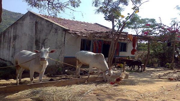 വടക്കേ കർണാടകത്തിലെ 'ഗൂഗിൾ' എന്ന ചെറിയ ഗ്രാമം